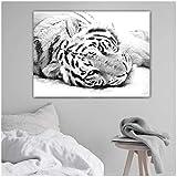 WANGXIAO Lienzo Imagen de arte de pared Tigre Blanco Como