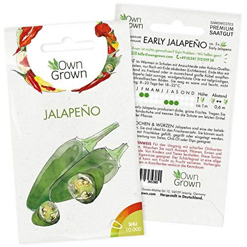 Chili Samen Early Jalapeño: 5 Premium Early Jalapeno Chilisamen zum Anbau von Chili Pflanzen für Balkon, Kübel und Garten – Jalapeno Samen für grüne Chilipflanzen – Chili Samen scharf von OwnGrown