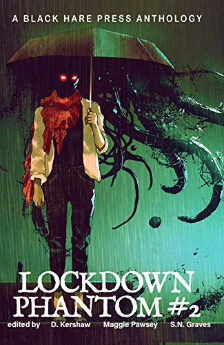PHANTOM #2: Lockdown Supernatural Fantasy (English Edition)