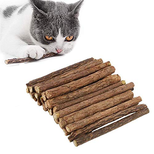 Juguetes Hierba Gatera para Gato, 30 Piezas Juguetes Orgánicos Hierba Gatera, Palitos para Masticar Gato, Palitos para Masticar Gato, para Gatito Tratamiento Dental Limpieza Dientes Molares Juguete