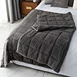 Mr.Sandman Sherpa Fleece Weighted Blanket Adults 20lbs for Queen Size Bed, Ultra Fuzzy Fleece & Comfort Sherpa Throw Blanket - Reversible Grey - 60'x80'
