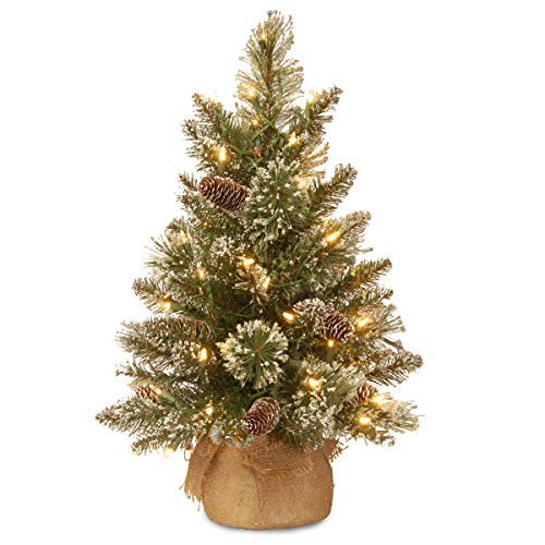 National Tree Company Pre-lit Artificial Mini Christmas Tree | Includes Small LED Lights, White Tipped Cones, Glitter Branches Pine Cones and Cloth Bag Base | Glittery Bristle Pine - 2 ft