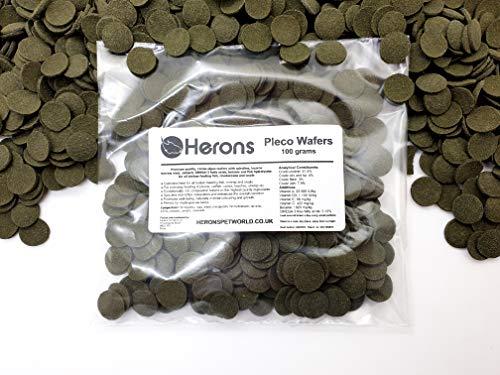 HERONS Pleco Wafers [100g] - Spirulina Algae Wafers - Fish Food For All Bottom Feeders - For Plecos, Catfish, Bristlenose