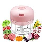 Picadora de Alimentos, 280ml Mini Picador Procesador de Alimentos con 4 Cuchillas Afiladas Carga USB Picadora Eléctrica para, Carne, Frutas, Cebolla, Ajo, Alimentos para Bebés