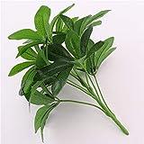 XINTON Plante Artificielle Plante Artificielle 9 Têtes Schefflera Octophylla Feuilles D'Intérieur Bonsaï Arbre Jardin Maison Chanceux Plantes Vertes Décoration