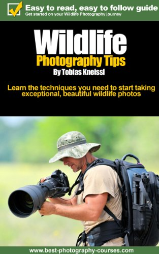 Wildlife Photography Tips - How to be in the right place at the right time with the equipment you need for beautiful wildlife photos