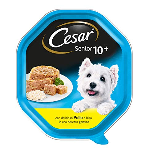 Cesar Senior 10 + Nourriture pour Chien avec délicieux Poulet et Riz dans Une Fine gélatine 150 g – 14 bacs