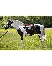 Norton Norton - Almohadilla de equitación Unisex para Adultos, Color marrón y Beige, N/A