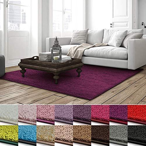 Shaggy Teppich Barcelona | weicher Hochflor Teppich für Wohnzimmer, Schlafzimmer, Kinderzimmer | viele Farben & Größen | 66x130 cm | Berry