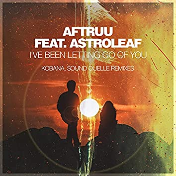 I've Been Letting Go Of You (Remixes)