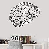 XCSJX Cerebro Pensamiento anatomía Inteligencia Ciencia médico médico Vinilo Pared calcomanía decoración del hogar Arte Mural extraíble 97x80 cm