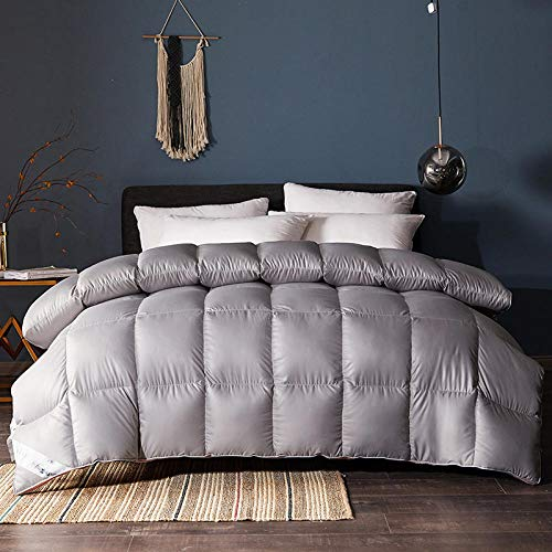 CHOU DAN Down Duvet Double,White Goose Down And White Duck Down 2020 New Three-Dimensional Quilt Thickened Warm Winter Quilt-Silver Gray_150x200cm 6 Kg
