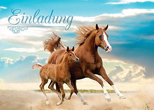 JuNa-Experten 12 Einladungskarten Kindergeburtstag Pferd Mädchen Geburtstagseinladungen Einladungen Geburtstag Party Kinder Kartenset Tiere Fohlen Pferde
