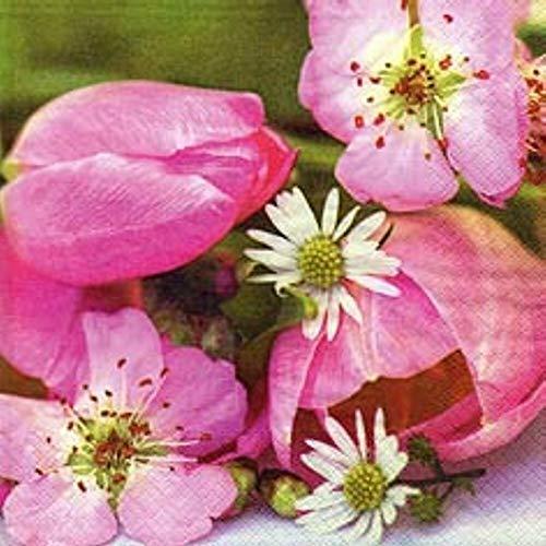 Linoows Serviettes 20 Pièce, Frühlingsblumengruß Avec Apfelblüten Et Tulipes 33x33 CM