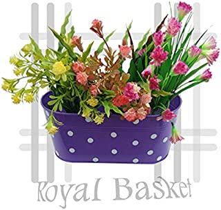 Royal Basket Dotted Oval Railing Planters (Purple, Pack of 1)…