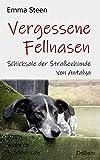 Vergessene Fellnasen - Schicksale der Straßenhunde von Antalya - Nach wahren Erlebnissen (German Edition)