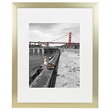 Frametory, Metal Picture Frame Collection, Aluminum Gold Photo Frame with Ivory Color Mat for 11x14 Picture & Real Glass (16x20)