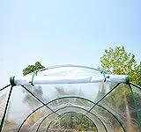 Zoom IMG-1 outsunny serra da giardino per