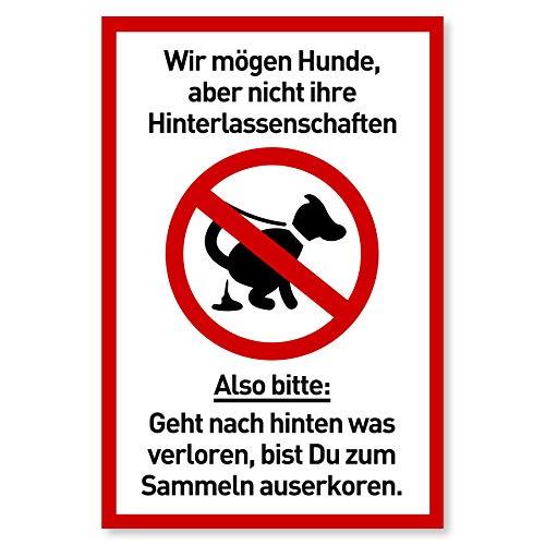 Schild Hunde kacken verboten (20 x 30 cm Kunststoff) - Lustig - Kein Hundeklo - Hundekot Schild - Hunde Verbotsschilder - Hundeschilder