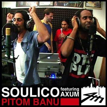 Pitom Banu (4th Street Session)