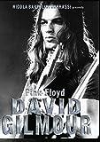 Pink Floyd David Gilmour [Italia] [DVD]