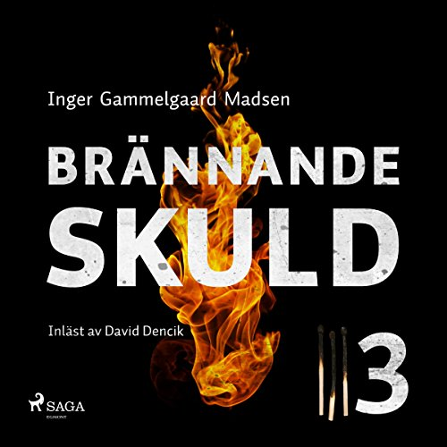 Brännande skuld 3 audiobook cover art