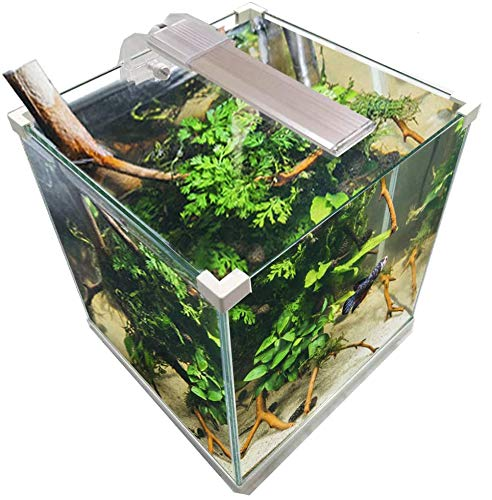 Aquariumset 15 liter filter voor rugzak + LED-display 5 W