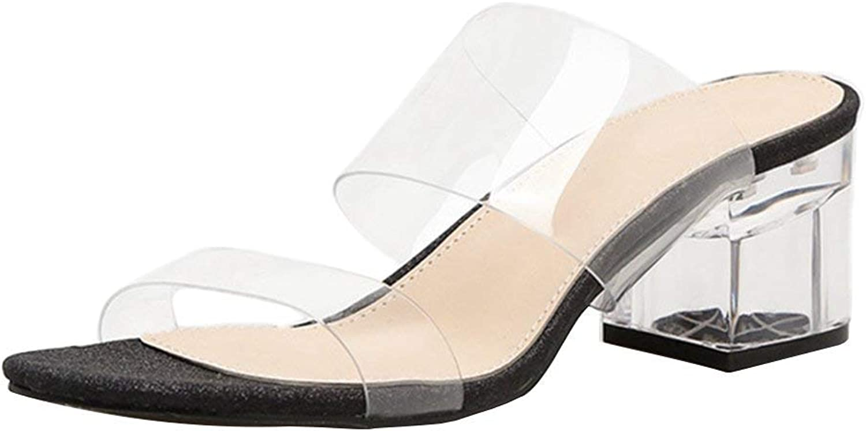 Elsa Wilcox Womens Chunky Heels Sandal Slippers Low Block Heel Slide Sandals Lucite Clear Slip On