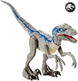 Jurassic World Figurine Dinosaure Articulé Vélociraptor Bleu Attaque Sauvage, Jouet pour Enfant, Gcr55