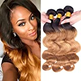 Dai Weier 3 Bundles Blond Brazilian Hair Human Hair Body Wave Weave Weft Ombre Two Tone Honey Gold Remi Extension Prime 18 20 22 Inches