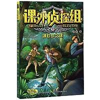 课外侦探组(9湖心岛之谜)