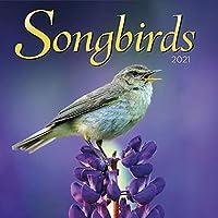 Turner Photo Songbirds 2021 フォトウォールカレンダー (21998940052)