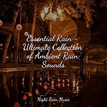 Essential Rain - Ultimate Collection of Ambient Rain Sounds