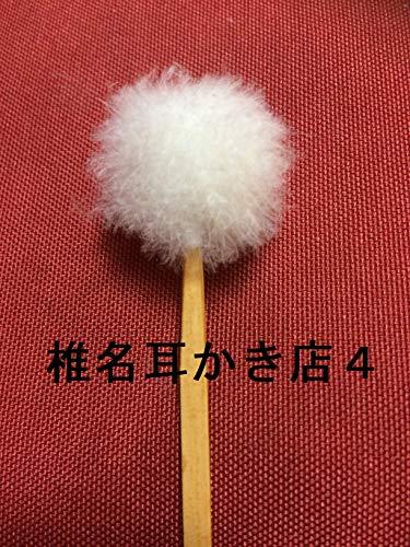 椎名耳かき店4 (みなと出版)