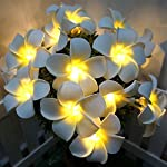 sezrgiu-artificial-plumeria-string-light-frangipani-flower-garland-fairy-lights-battery-powered-for-wedding-beach-party-decor-white-20led
