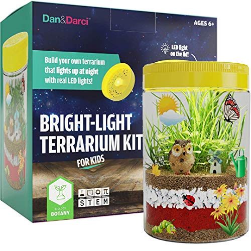Dan&Darci Kit de Terrario de Luz LED en Tapa | Contruya su Propio Terrario Que se Ilumina de Noche con Luces LED Reales | Gran Kit de Ciencias para Niños | Juguetes Niños