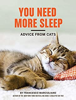 Best you need more sleep advice from cats Reviews