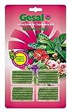 GESAL Concime in Bastoncini Universale, Per fioriture rigogliose e brillanti, 100 Giorni di nutrimento