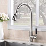 ATUM HOME Silver Monobloc Stainless Kitchen Taps, Pull Out Mixer Tap Faucet