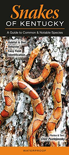 Snakes of Kentucky: A Guide to Common and Notable Species (Guide to Common & Notable Species)
