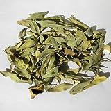 250g Apocynum Venetum Tea/ Luo Bu Ma Chinese Healthy Tea
