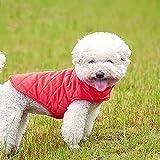 Giacca cappotto per cani Etechydra, gilet invernale caldo per cani, abbigliamento per cani foderato in cotone, vestiti per cani antivento con colletto in pile, pullover leggero, Rosso - L
