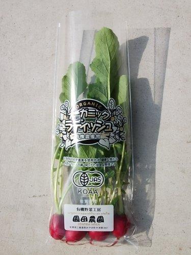 九州 佐賀県 園田農園 ラディッシュ100g (JAS有機栽培)