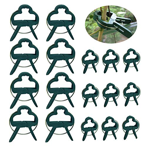 Sweieoni Pflanzenclips 60 Stück Pflanzenclips Pflanzen Clips Stabile Clips Pflanzenklammern Pflanzenhalter für Pflanzen Unterstützt Einzupflanzen Spaliere Rosenbogen Rankhilfe (2 Größen)