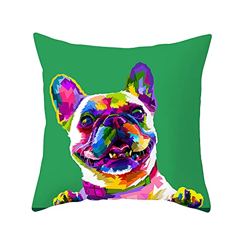 PTHAHNIL Colorful Abstract Art Animals Pattern Cute Pets Throw Pillow Cover 18 x 18 Square Pillowcases Cushion Cover Home Decor for Sofa Couch (French Bulldog)