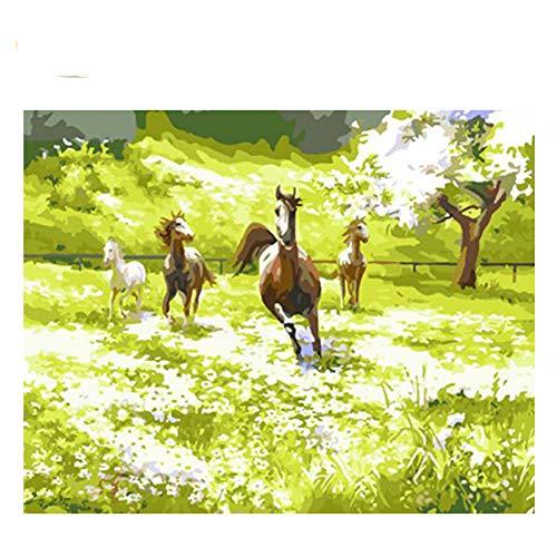 GKJRKGVF Paarden Galloping Tekenen Door Getallen DIY Vast Prairie Schilderen Handwerk Op Canvas Olieverfschilderij Kunst Kleurplaten Voor Thuis Gift