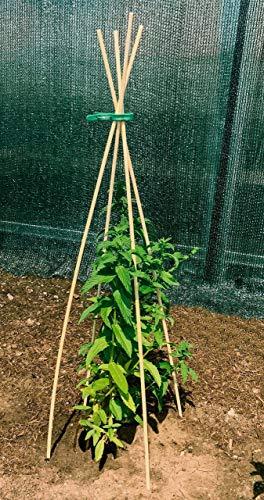 maxpack® 100 x Pflanzenstüze Tomatenstangen Rankstäbe aus Holz Pflanzstab Rankstab 90 cm aus Bambus Ø 6 mm