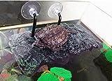 Plataforma de tortuga, Willdo PU espuma acuario flotador decoración...