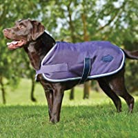 Weatherbeeta Windbreaker 420 Dog Coat, Windproof & Waterproof Jacket for Small Medium Large Dogs | Violet/Gray, 22