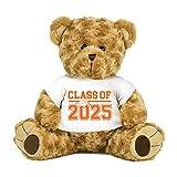 8th Grade Class of 2025 Graduation Personalized 16' Teddy Bear Choose School Colors Personalized Name Jr High Graduates Custom Gift